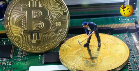 Cryptocurrency Miners Are Advertise Graphics Cards To Spread Profits